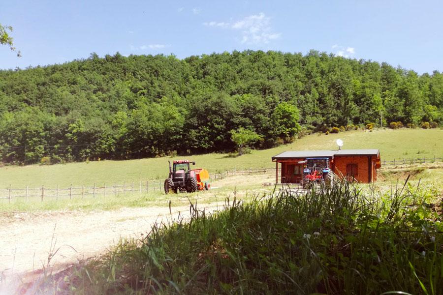 fattoria didattica